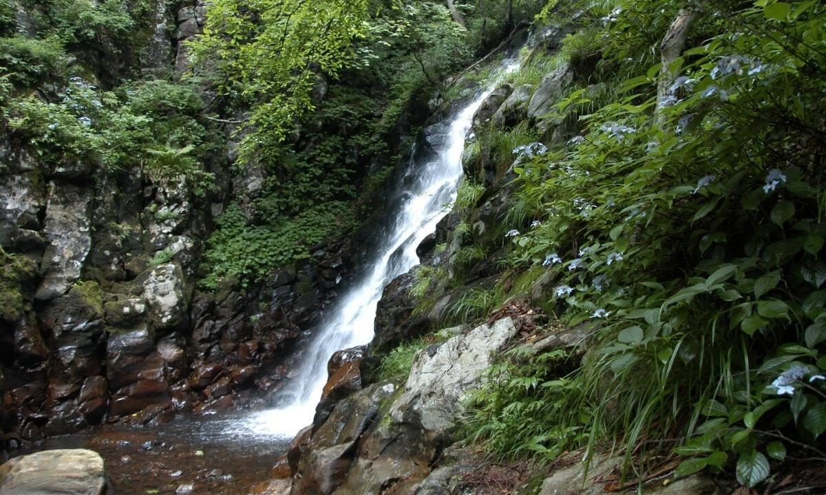 「ザランタン(The Lantown)あば村」の近くのハイキングコース